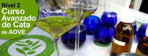 http://www.escuelaeuropeadecata.com/producto/nivel-2-curso--de-analisis-sensorial-y-cata-del-aceite-de-oliva-virgen-extra-