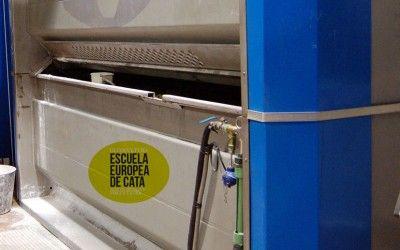 Nuevo coadyuvante autorizado para la extracción de aceites