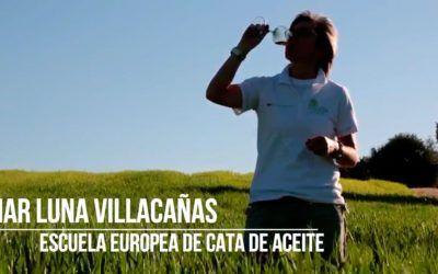 Nuevo vídeo promocional de la Escuela Europea de Cata-Escuela del Aceite