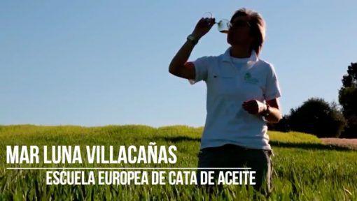 portada-video-escuela-europeadecata-con-marluna