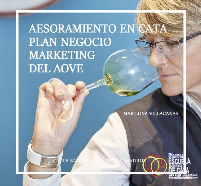 ASESORÍA ACEITES DE OLIVA, MARKETING Y VENTA