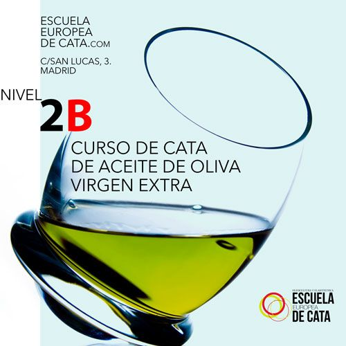 CATA DE ACEITE DE OLIVA VIRGEN EXTRA NIVEL 3