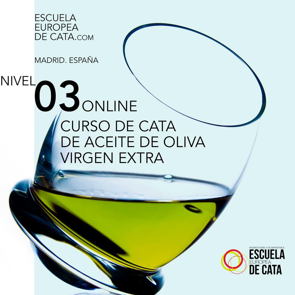 nivel 3 cvata de aceite de oliva virgen extra