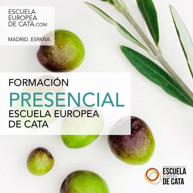 formacion-presencial-en-aceites-de-oliva