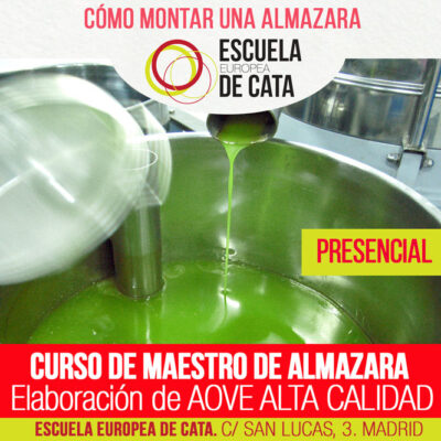 CURSO-MAESTRO-DE-ALMAZARA-PRESENCIAL