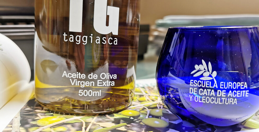Conociendo mejor la variedad de aceituna Taggiasca