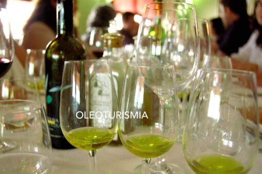 OLEOTURISMO-COMO-NEGOCIO